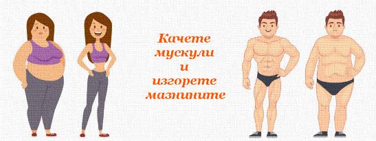 Качете мускули и изгорете мазнините