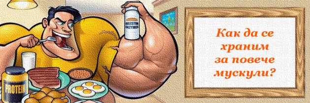 Хранене за мускулна маса. Основни принципи.