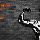 Мускули на гърба – анатомия и тренировка