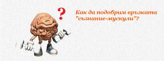 """Как да подобрим връзката """"съзнание-мускули""""?"""