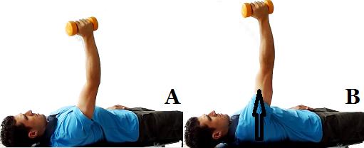 3. Протракция на лопатката с дъмбел/ тежест от тилен лег