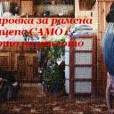 Функционален бодибилдинг: Рамена и трицепс САМО с теглото на тялото