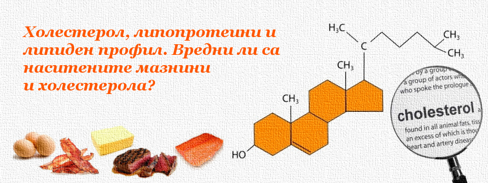 Холестерол, липопротеини и липиден профил. Вредни ли са наситените мазнини и холестерола?