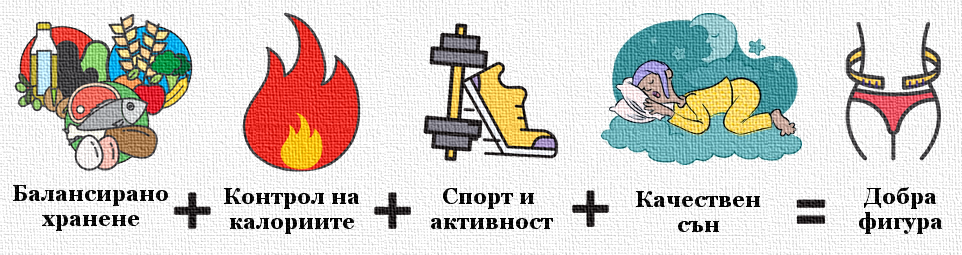 Основните компоненти на добрата фигура