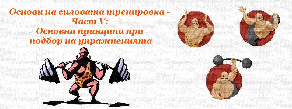 Основи на силовата тренировка – Част V: Основни принципи при подбор на упражненията
