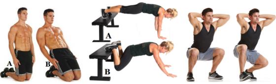 reverse Nordic curl, bodyweight feet-elevated leg extension, duck walk