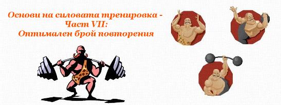Основи на силовата тренировка - Част VII: Оптимален брой повторения